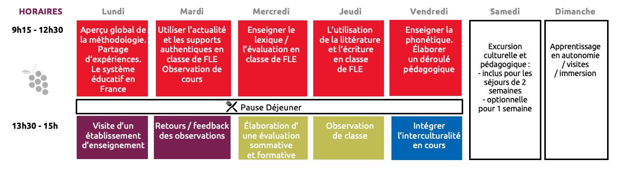 MÉTHODOLOGIE DE L'ENSEIGNEMENT DU FRANÇAIS