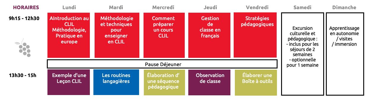enseigner sa matière en français